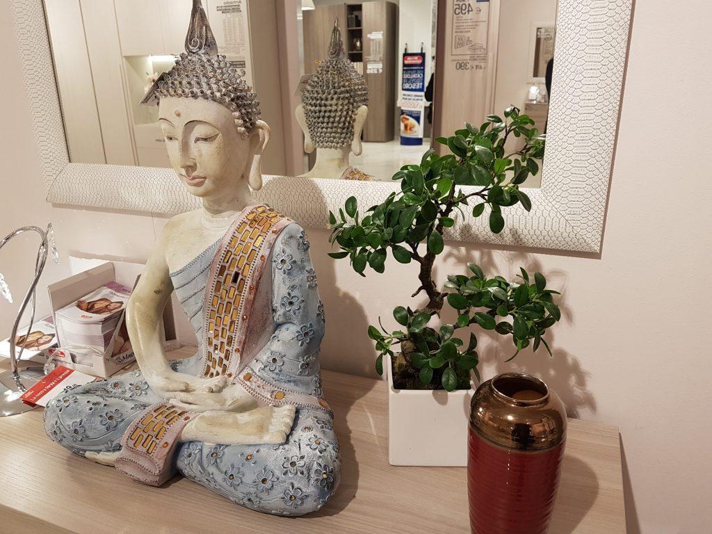 Bonsai stili tradizioni e prezzi