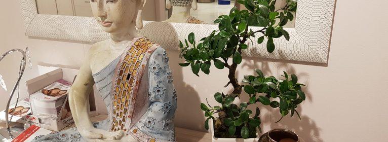 Bonsai: stili e tradizione