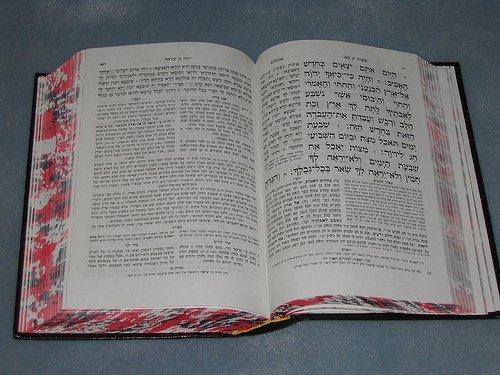 il libro di cucina del sesso giapponese ebraico