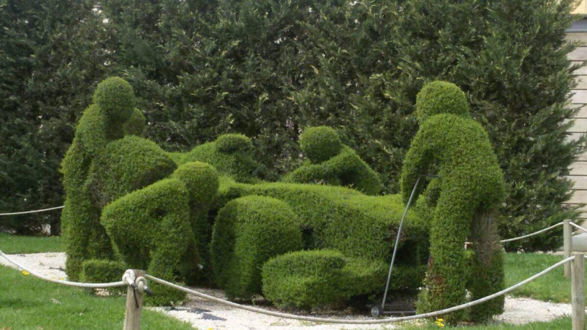 Giardini e progettazione