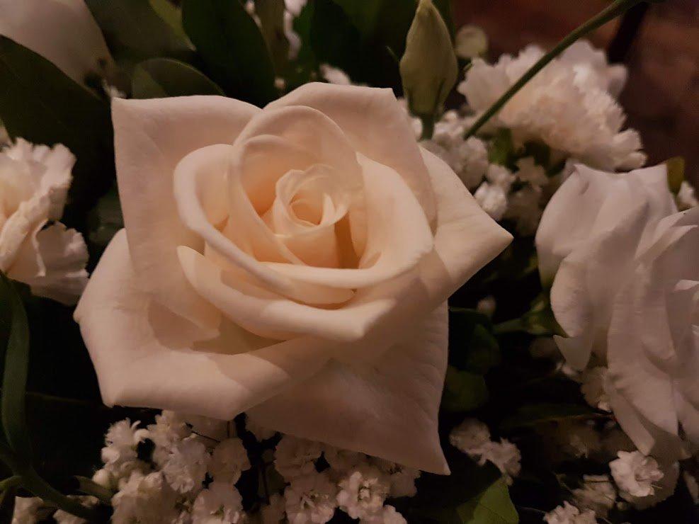 Bouquet Da Sposa Settembre.I Fiori Di Settembre E Ottobre Giardino Bouquet Cerimonie Regali