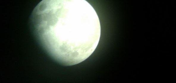 L'influenza della luna nella vita di piante e animali e globo