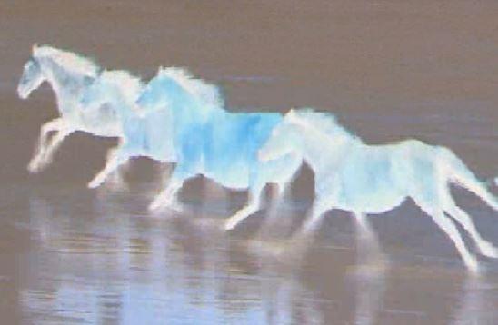 Sognare un cavallo: simbologia-significato-numerologia