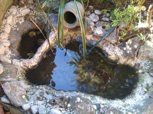 Realizzare il laghetto in giardino