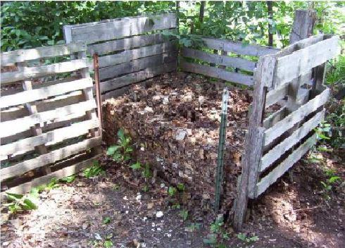 Compost e riciclo: come fare terriccio concimato fai da te