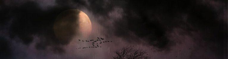 Sognare la luna: significato, simboli e numeri da giocare