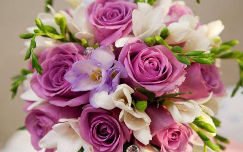 Fiori Settembre.I Fiori Di Settembre E Ottobre Giardino Bouquet Cerimonie Regali