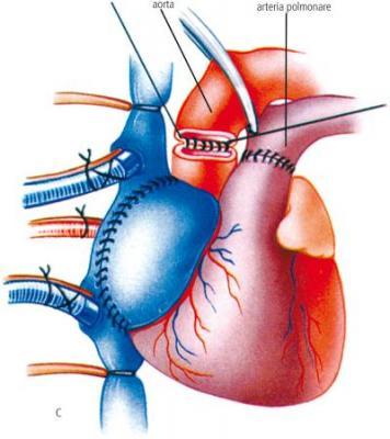 Credi foto Cardiopepole.com