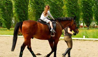 Ippoterapia o equitazione benefici fisici e psichici di questo sport