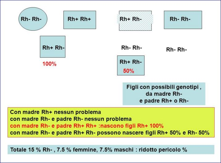 fattore rh