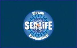 acquario sea life roma 2