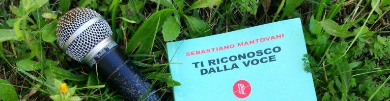 Ti riconosco dalla voce libro di Sebastiano Mantovani intervista all'autore