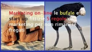start up e bufale del web