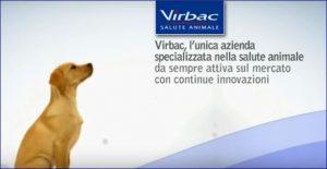 vibarc shampo cani