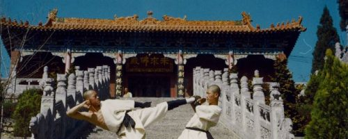 Arti Marziali e Medicina Cinese: il Maestro Shaolin Shin Yan Hui