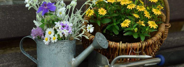 I 10 attrezzi indispensabili per il giardino