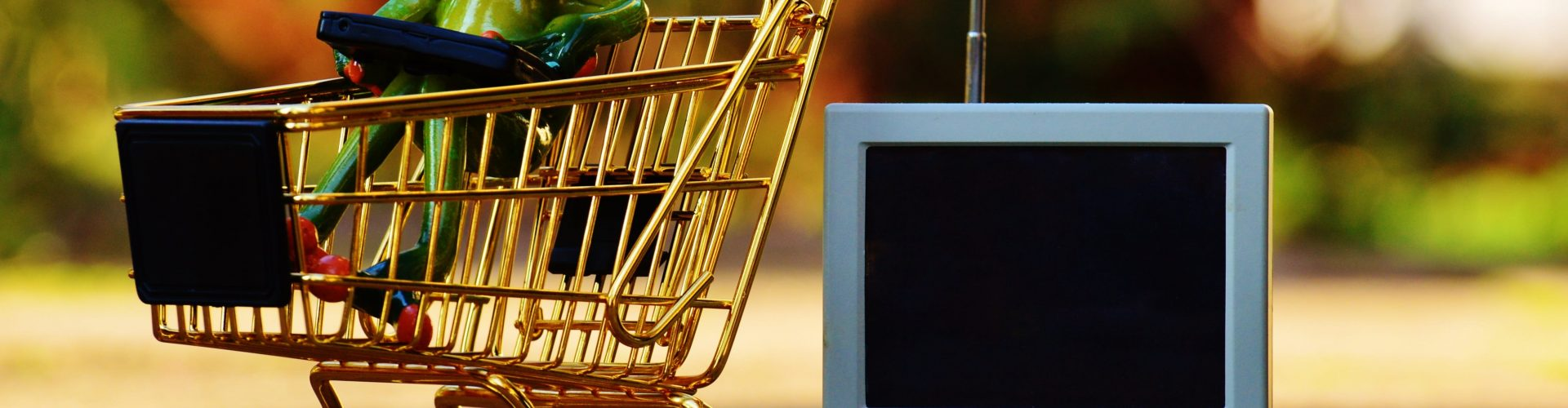 2b0a223b69e5 Come scegliere i migliori siti per fare acquisti online sicuri ...