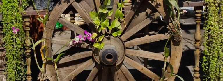 Sognare una ruota o cerchio: significato, simboli e numeri da giocare