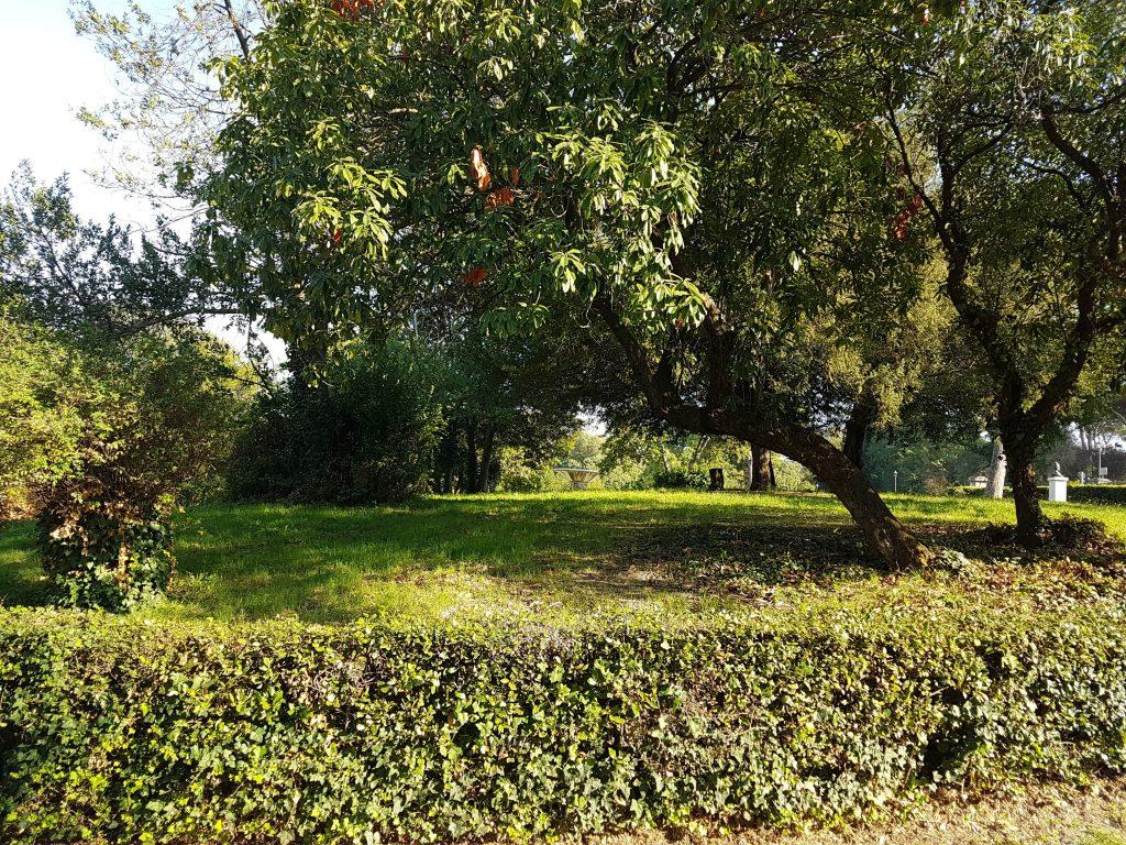 Avere un giardino ordinato è possibile?