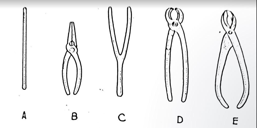 Cura dei bonsai: gli attrezzi necessari
