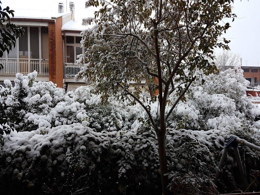 Sognare la neve significato, numeri dell lotto e simboli