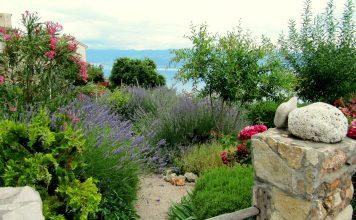 Come sistemare il giardino di casa per le vacanze