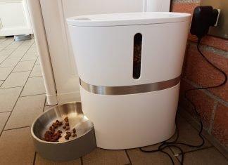 Gatti, cani e vacanze: distributori automatici per pet