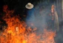 La Foresta amazzonica in fiamme brucia da settimane quali saranno le conseguenze?