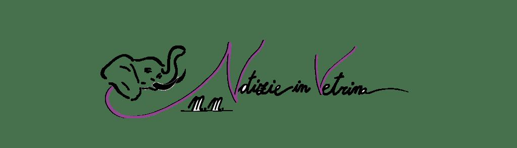 Notizie In Vetrina