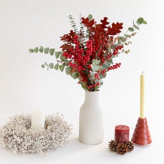 fiori e piante natale