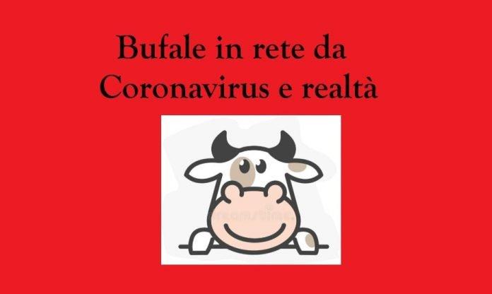 L'italiano medio e le bufale da Coronavirus