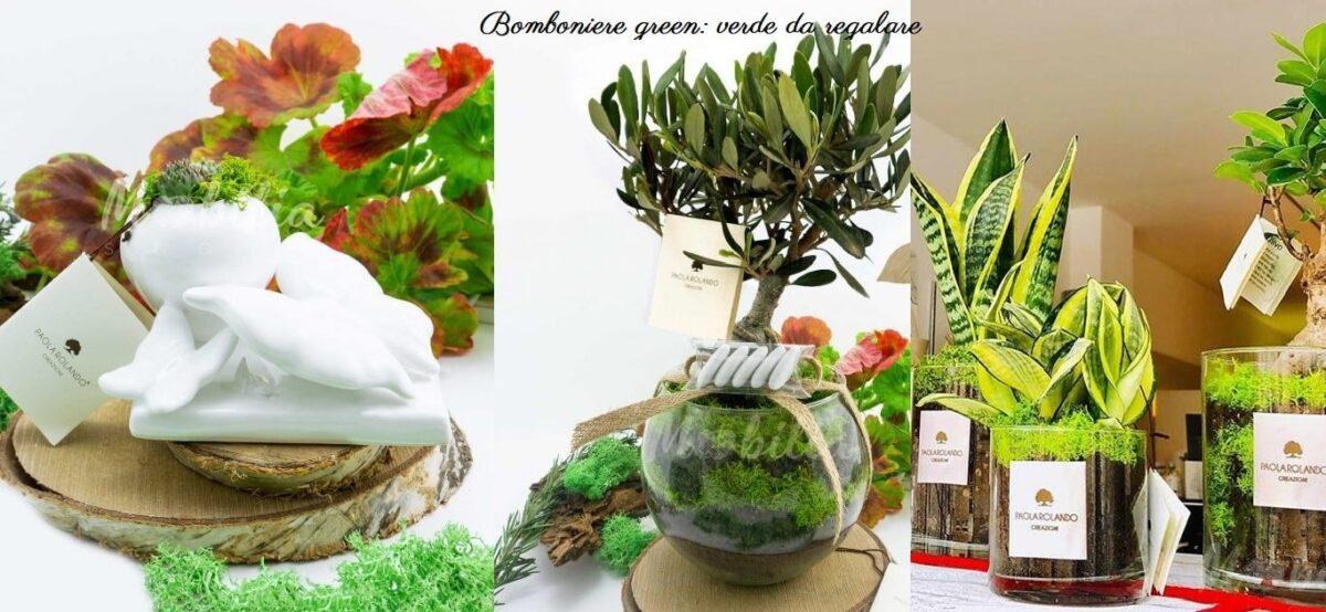 Piante Da Regalare A Pasqua 3 bomboniere green originali per matrimonio, battesimo e