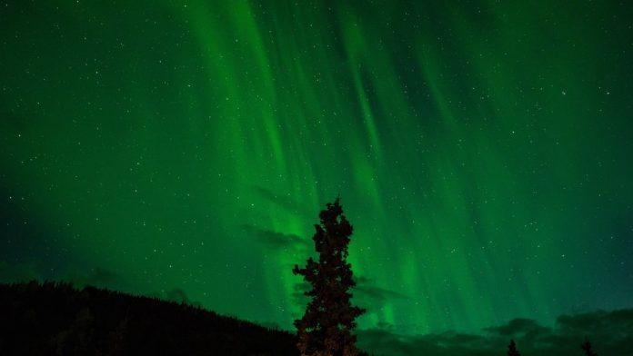 Colore verde nei sogni