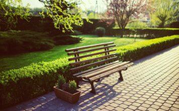 Il verde di tutti: 5 accorgimenti per un giardino accessibile
