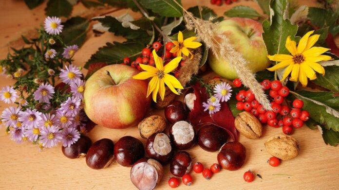 Frutta e verdura in autunno: 8 cibi che fanno bene alla salute
