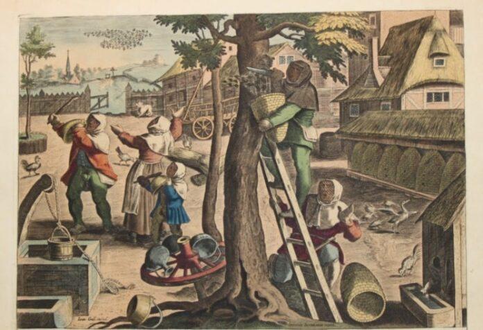 Apicoltura, miele e zucchero, spezie e salumi nel Medioevo e Rinascimento