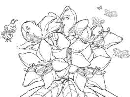 Rododendro disegno da colorare fiore con vaso: Rhododendron