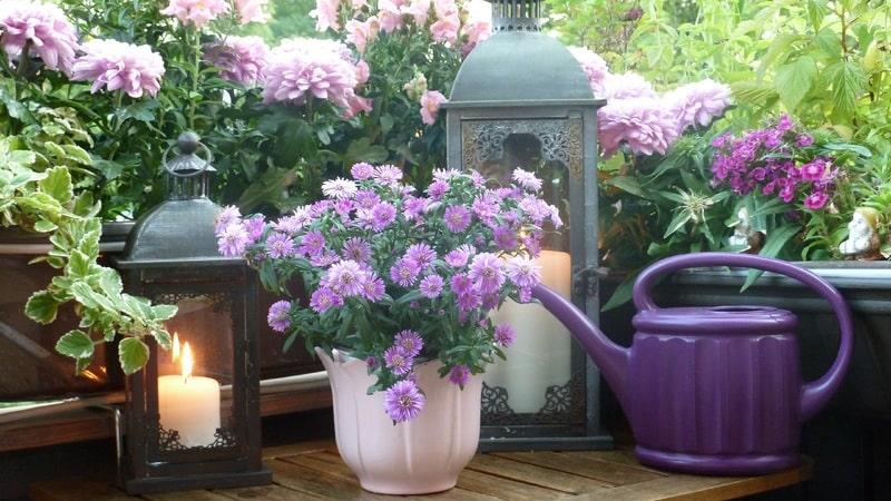 Balcone fiorito e relax