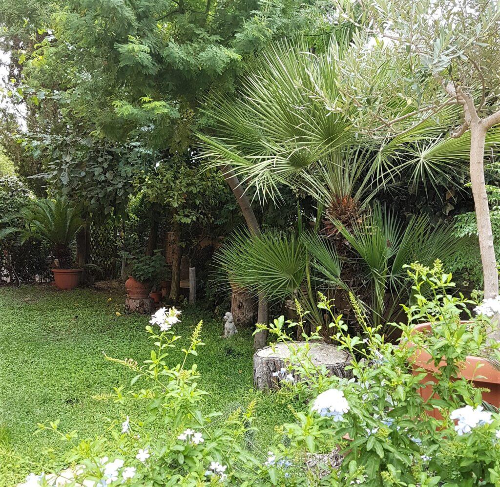 Il giardino ad Ottobre